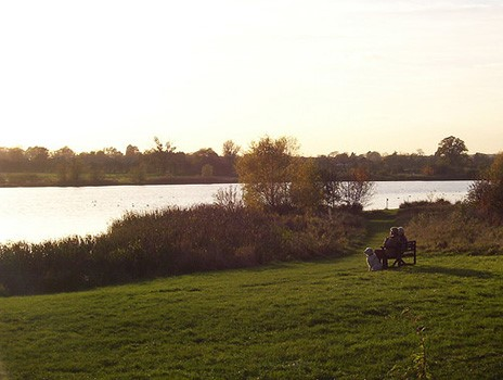 Seating at the main lake at Hinchingbrooke Country Park