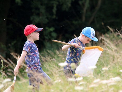 Minibeast hunting at Hinchingbrooke Country Park