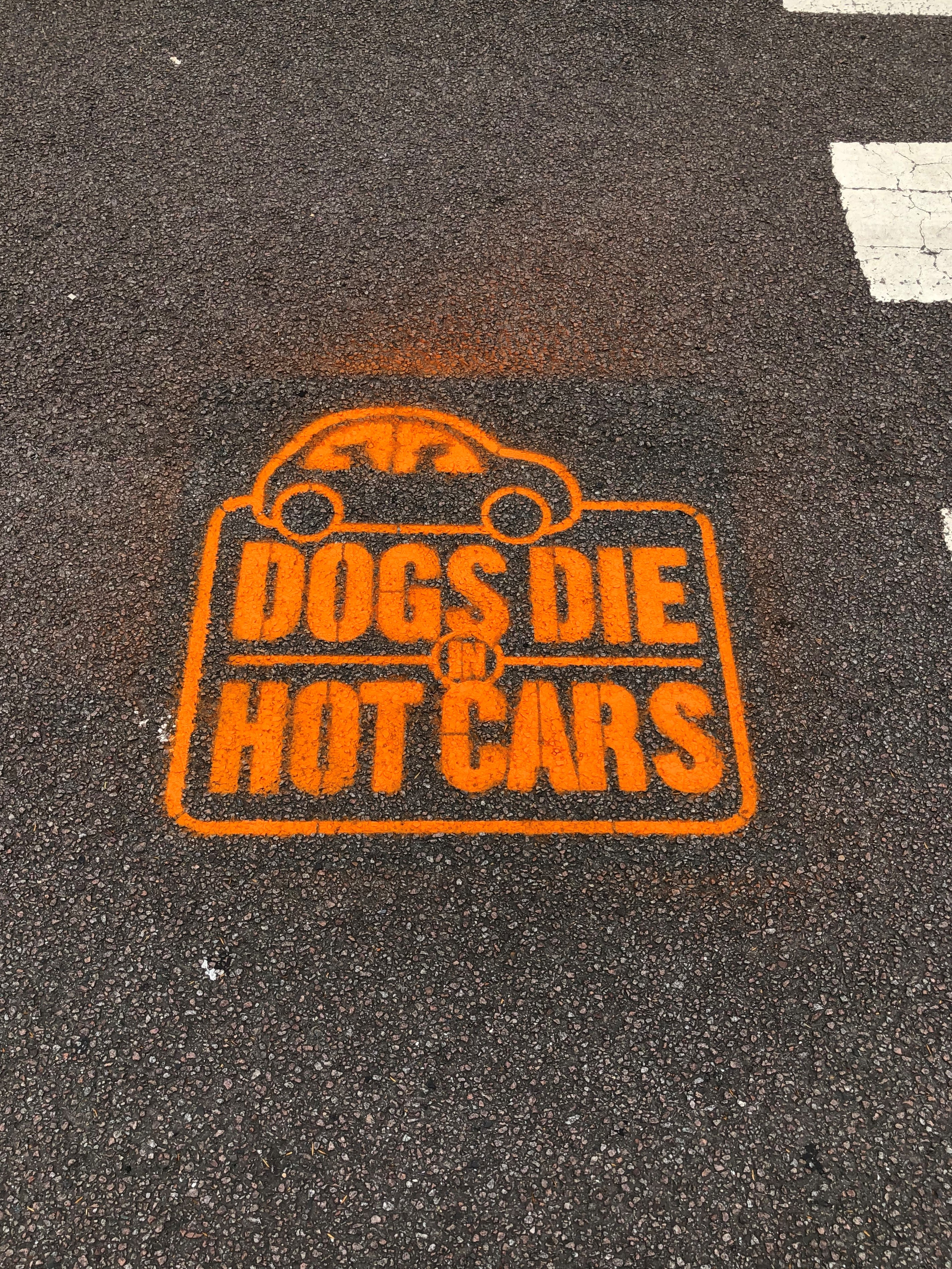 Dogs die in hot cars stencil