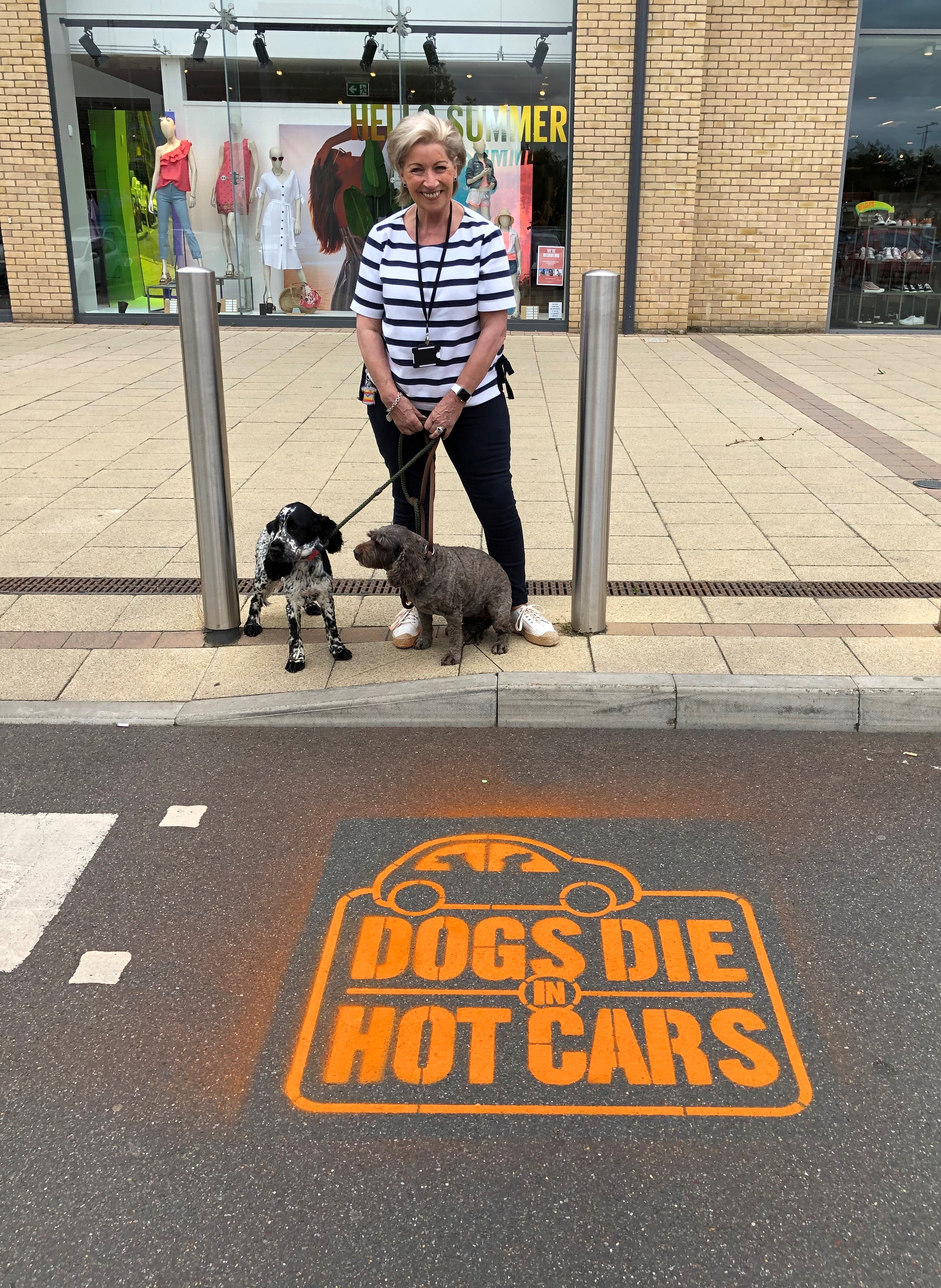 Dogs die in hot cars stencil and Marge Beuttell
